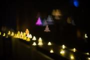 Woche 51 - Weihnachtlich