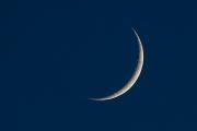 Woche-24-Mond