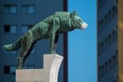 Woche-18-Passauer-Wolf