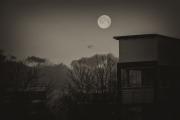 Woche-7-Mond